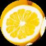 ジューシーオレンジ(河内晩柑)